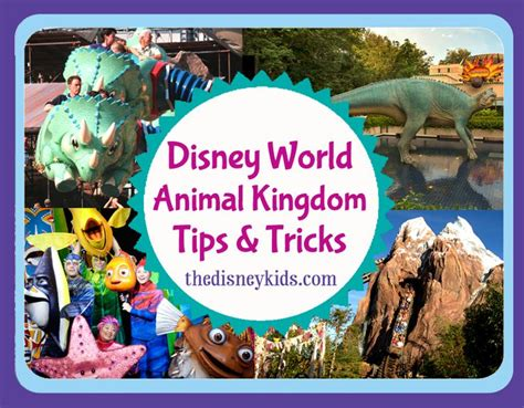 250 tips and tricks for walt disney world resort books 477 best images about animal kingdom layouts on