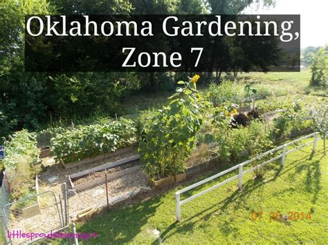 gardening in oklahoma zone 7 gardening zones gardens