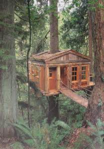 terrierman s daily dose a cabin in the woods