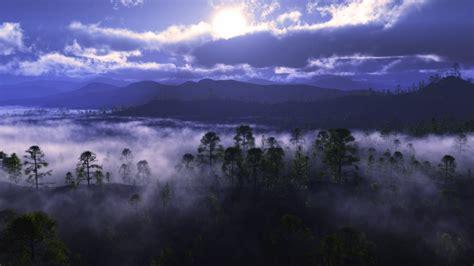 wallpaper usa hd desktop full hd wallpaper fog humboldt toiyabe national forest