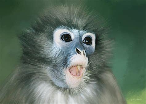 monkey painting thoughtamnia organisation