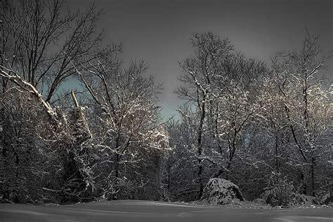 winter sparkle michael samuelson photography