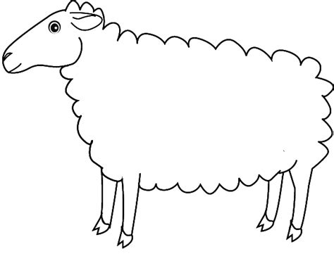 Coloring Sheep Sheep Colouring Page