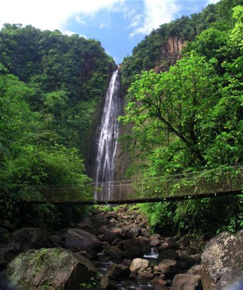 La Hamac.com Vous etes bient t en Guadeloupe ; )