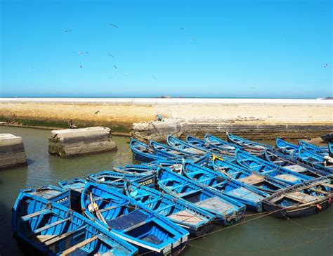 boat trip essaouira a day trip to essaouira best things to see do in