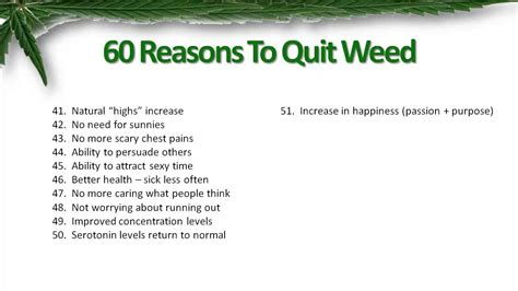 8 Reasons To Quit Your Day by Quit Marijuana The Complete Guide Review 60 Reasons