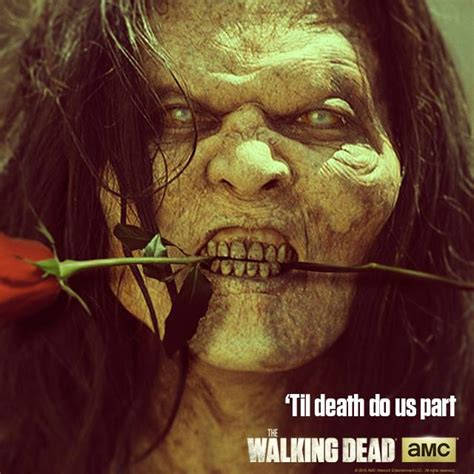 the walking dead valentines day walking dead s day image 07 daily dead