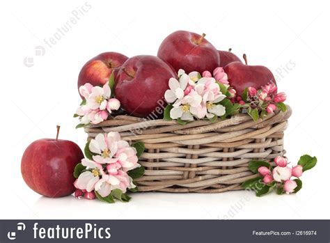 flower foods stock flower foods stock flower foods stock 100 flower foods