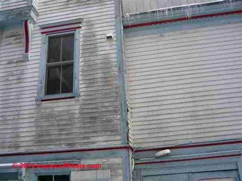 algae on house siding stains discoloration on buildings how to diagnose