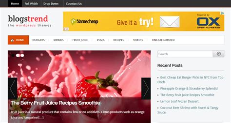 blog themes with ad space wordpress themes supporting third party ads to monetize