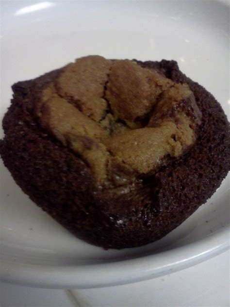 Brownies Delfi By Zt Shop crust to crumb brownie cookie cups brookies