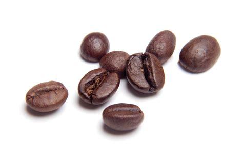 Coffee Bean c4b fd coffee 1 box coffee4business