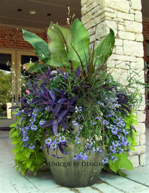 Large Planter Ideas by 1000 Ideas About Container Gardening On