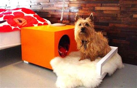 unique indoor dog houses 15 unique strange luxurious dog houses the pets central