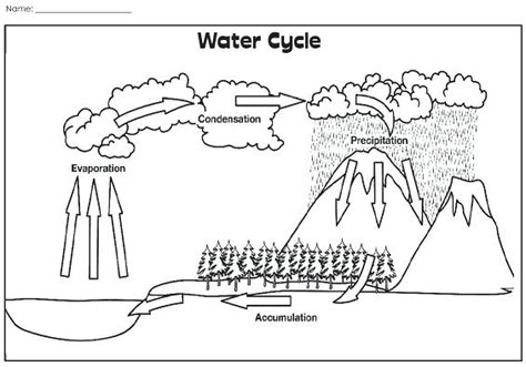 water cycle coloring page pdf home improvement water cycle coloring page coloring