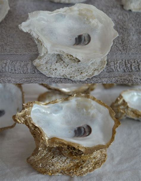 oyster shell craft projects best 25 oyster shells ideas on oyster shell