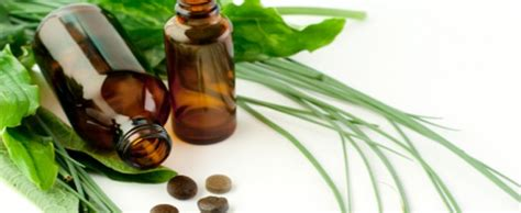 tea tree oil for bed bugs bugout bag must have tea tree oil efoodsdirect blog