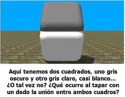 ilusiones opticas y juegos mentales ilusiones opticas cubos grises y blancos acertijos e
