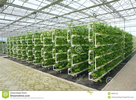 Small A Frame House Plans Free Greenhouse Stock Photo Image 45850132