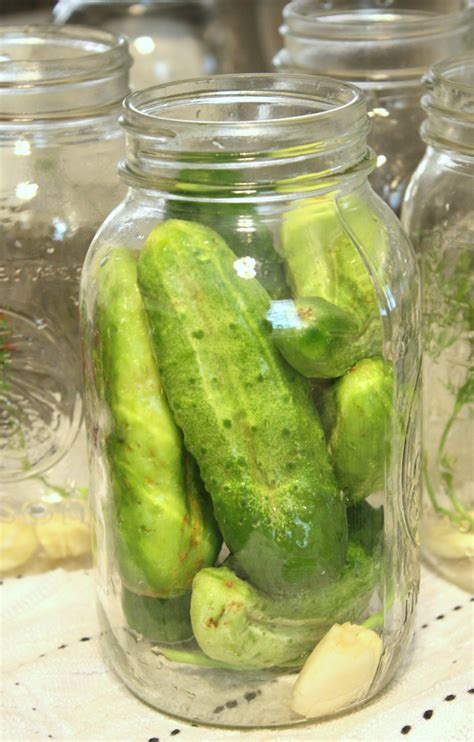 Handmade Pickles - it s just preserving the harvest claussen