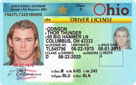 i lost my ohio boating license new ohio oh drivers license id viking