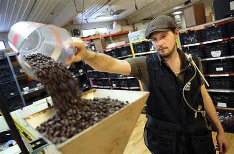 Coffee K Link coffee workers concerns brew chemical s link to lung