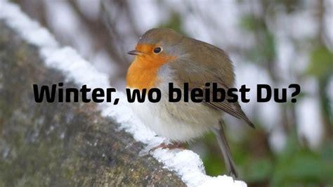 wann kommt winter wann kommt der winter 2014 news wetter24 de