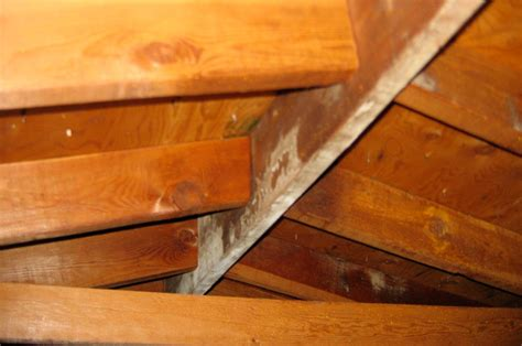 How To Repair A Sagging Ceiling by Pedestrian Truss Styles Quotes