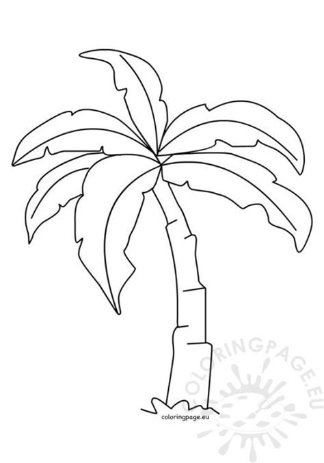 Palm Tree Leaves Outline by Easter Template Palm Leaf Sunday School Lesson Sketch Coloring Page
