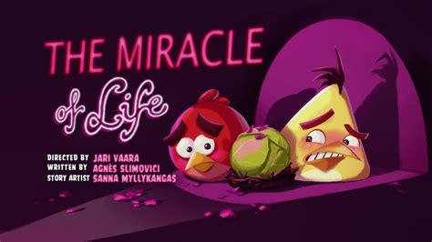 The Miracle Season Wiki The Miracle Of Angry Birds Wiki