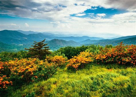 Top 10 Smoky On by Top 10 Attractions In The Smoky Mountains