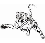 Tiger Coloring Pages  Animal 33 Free