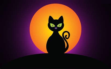 imagenes de halloween telarañas halloween wallpapers halloween fondos hd gratis