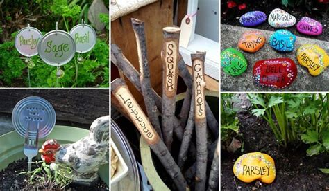 19 and no money ideas to label the garden plants