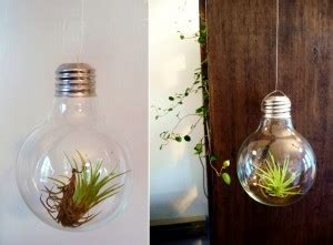 what to do with light bulbs whattodowithold what to do with light bulbs