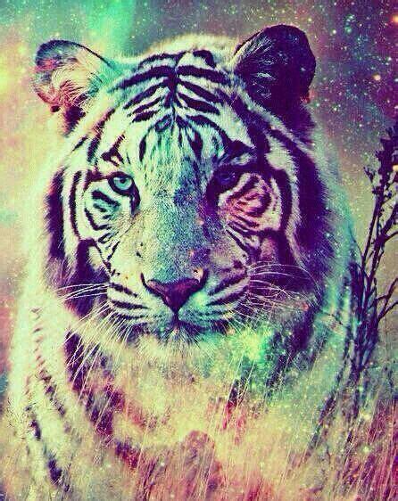 imagenes de tigres cool tigre galaxia felinos pinterest galaxias