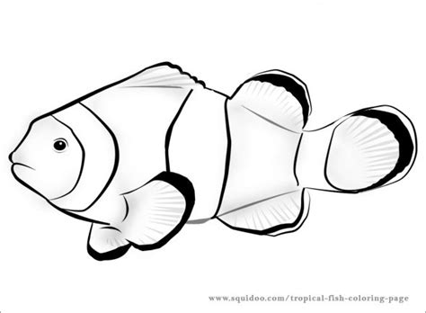 fish template fish template craft free colouring
