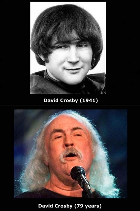 david crosby md 1000 images about crosby stills nash and young on