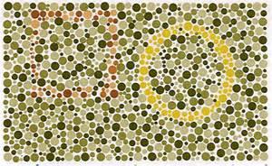 does la colors test on animals 测一测 你是色盲的吗 悬疑帝国 烧脑族 电影