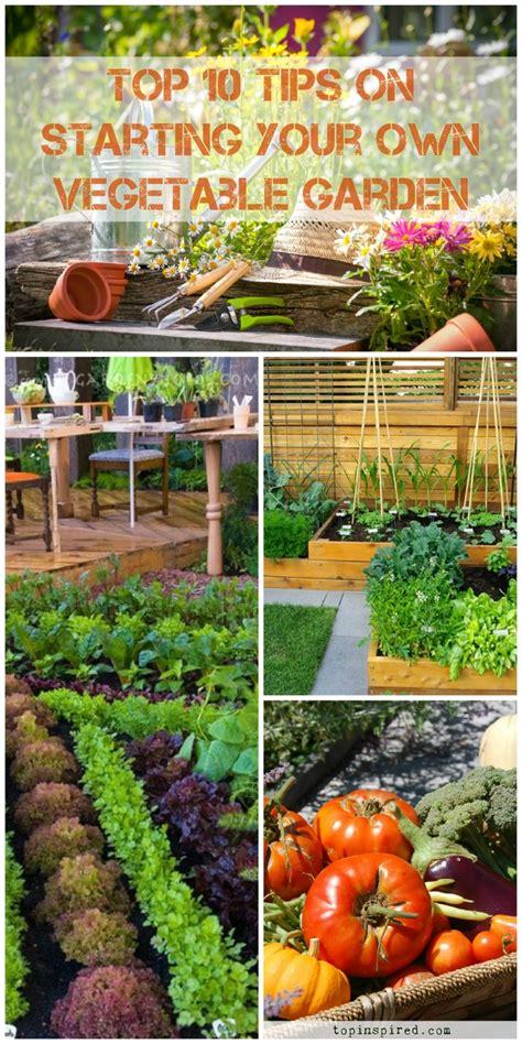 Vegetable Garden Top 10 Tips On Starting Your Own 2018 Starter Vegetable Gardens