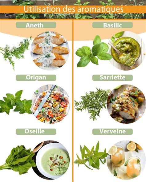 fruits et l 233 gumes d 233 t 233 le plein de vitamines alliance le comptoir du jardinier 28 images quels fruits t l