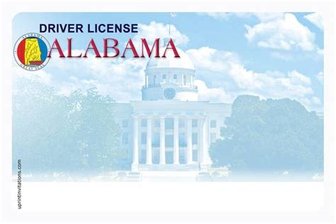 blank drivers license template drivers license