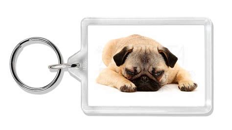 pug products gifts pug photo keyring animal gift id 23150