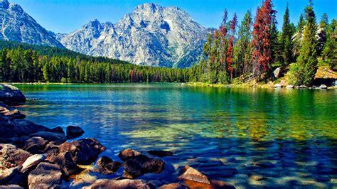 7 Beautiful Photos by Beautiful Wallpaper 1366x768 2705
