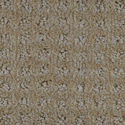 home decorators collection carpet sle traverse color ottawa pattern 8 in x 8 in ef home decorators collection traverse color carnegie