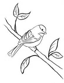 Chickadee Coloring Page Samantha Bell