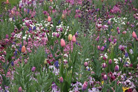 Britzer Garten Eingang Mohriner Allee by Saisonbepflanzungen In Der Mohriner Allee B 252 Ro Christian