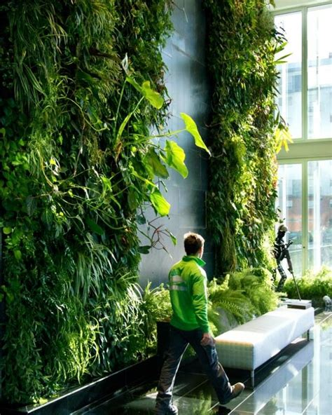 103 best images about living walls on moss