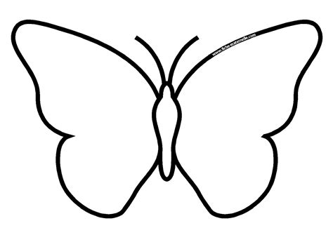 Coloriage Papillon Insectes Page 2