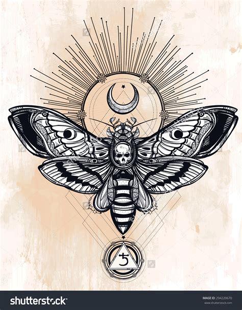 dead head tattoo designs deaths moth wallpapers animal hq deaths moth